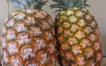 Ananas (1 st)
